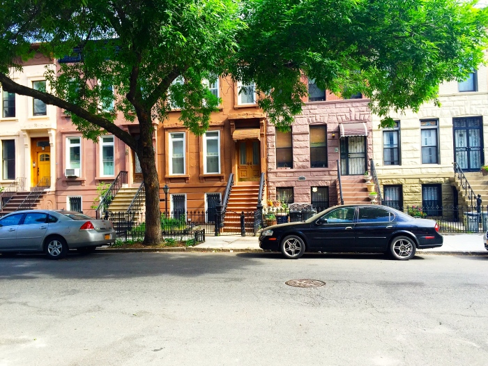 Brooklyn Vibes